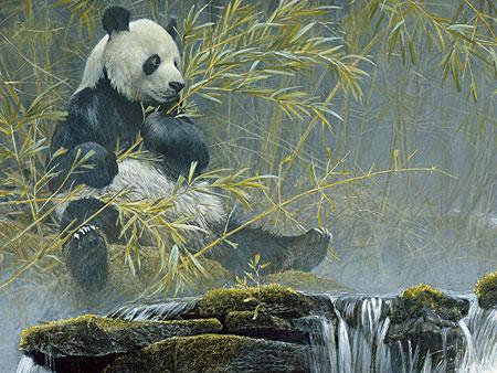 gro-er-panda