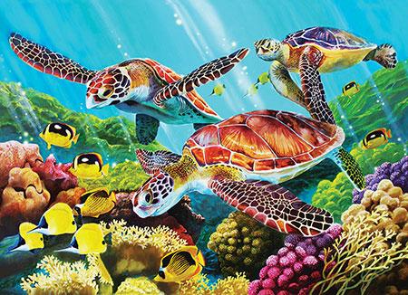 Molokini Schildkröten