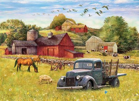 Bauernhof in der Sommersonne