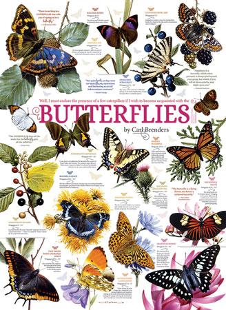 Schmetterlinge aller Art