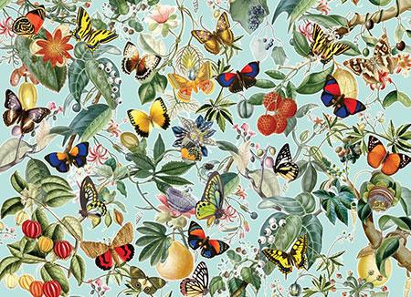 Früchte und Schmetterlinge