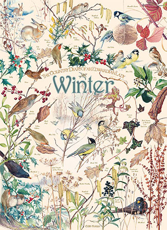 Tiere des Winters
