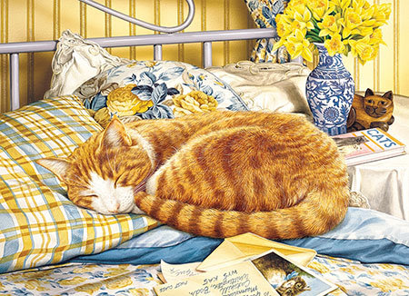 Kätzchen auf dem Bett