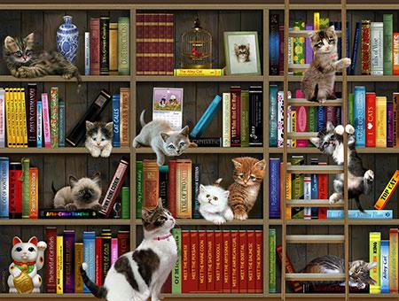 Katzen in der Bibliothek