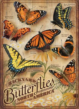 Schmetterlinge Nordamerikas