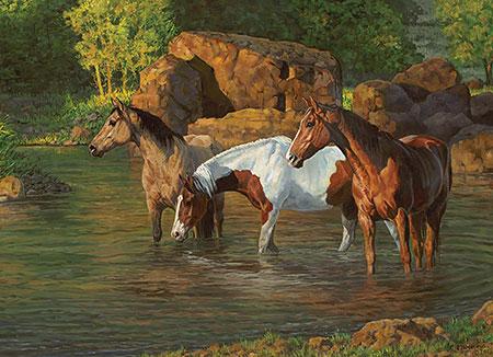 pferde-am-teich