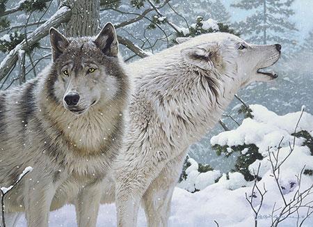Winterwölfe