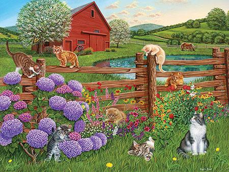 Ein Bauernhof voller Katzen