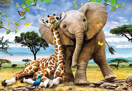 Elefant und Giraffe kuscheln sich aneinander