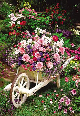 Bunte Blumen in der Schubkarre