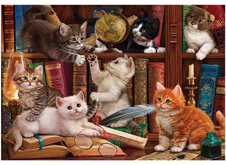 Kätzchen in der Bibliothek