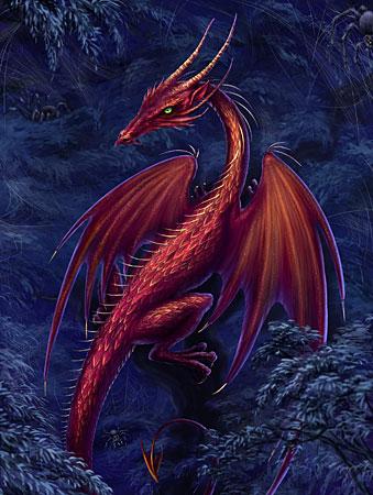 Drachenkönig