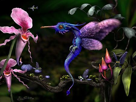 Der Kolibridrache