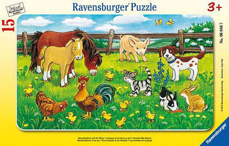 Bauernhoftiere auf d.Wiese