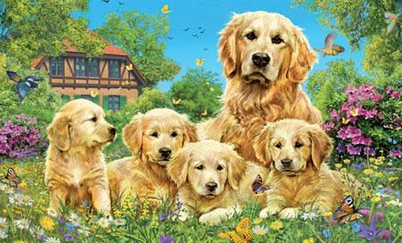 süße hunde spiele