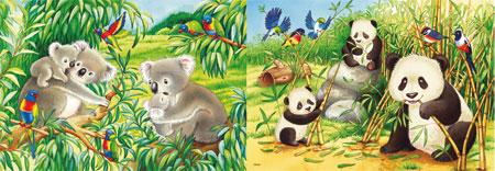 su-e-koalas-und-pandas