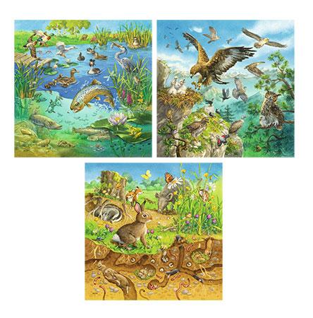 Tiere in ihren Lebensräumen