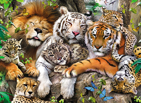 Süße schmusende Raubkatzen