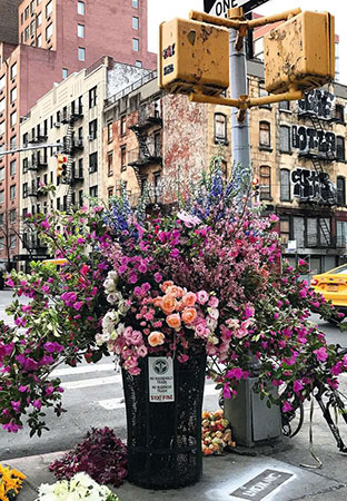 Moment - Flowers in New York