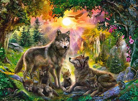Wolfsfamilie im Sonnenschein