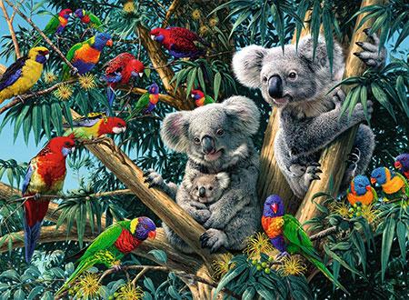 Koalas im Baum