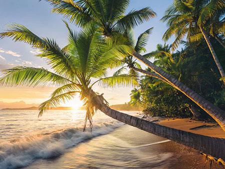beach-hideaway