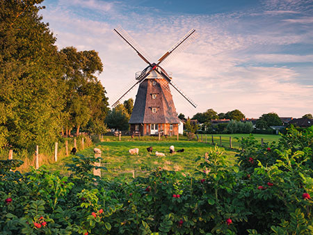 Windmühle an der Ostsee