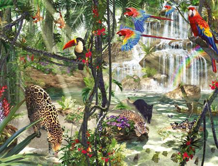 Dschungelimpressionen