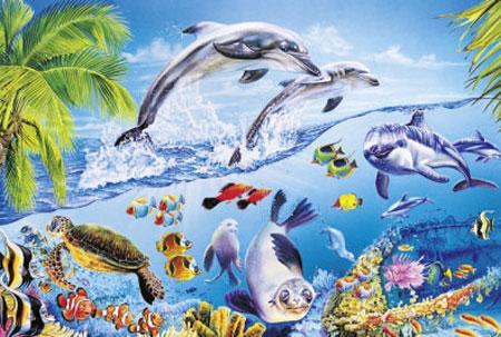 Glückliche Delfine