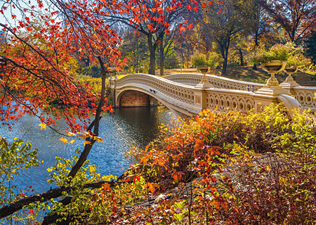 spaziergang-im-central-park-new-york