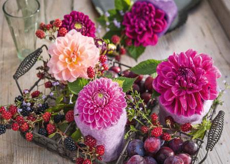 Beeren und Blumen