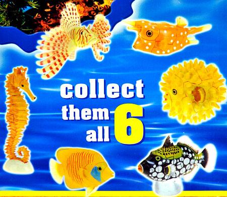 3D Puzzle - Ozeanfische