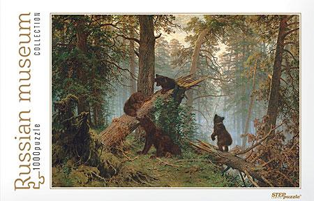 morgengrauen-im-kiefernwald