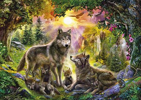 Wölfe bei Sonnenuntergang