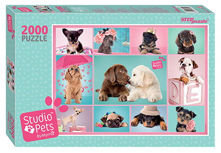 studio-pets-welpen-collage