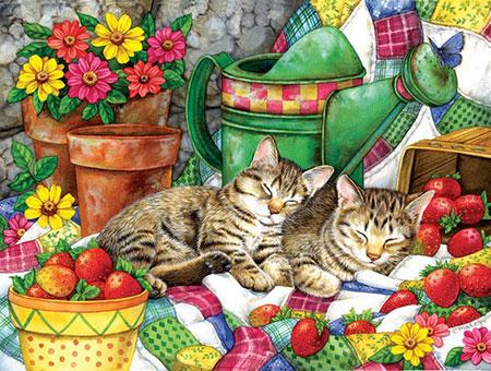 katzchen-schlafen-in-den-erdbeeren
