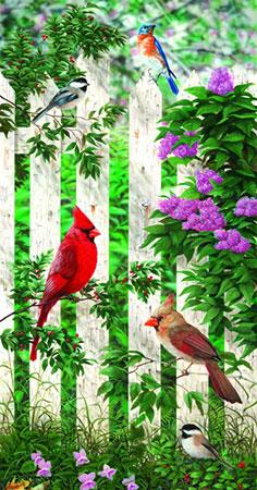 kardinale-auf-dem-lattenzaun