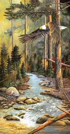 der-vogel-des-nordens