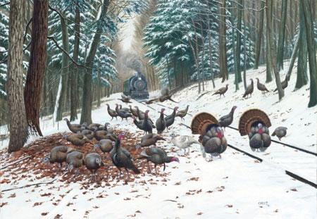 truthahne-im-winter