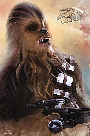 Star Wars Episode VII - Chewbacca
